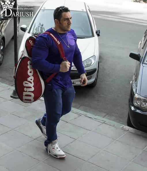 رضا زینتلو