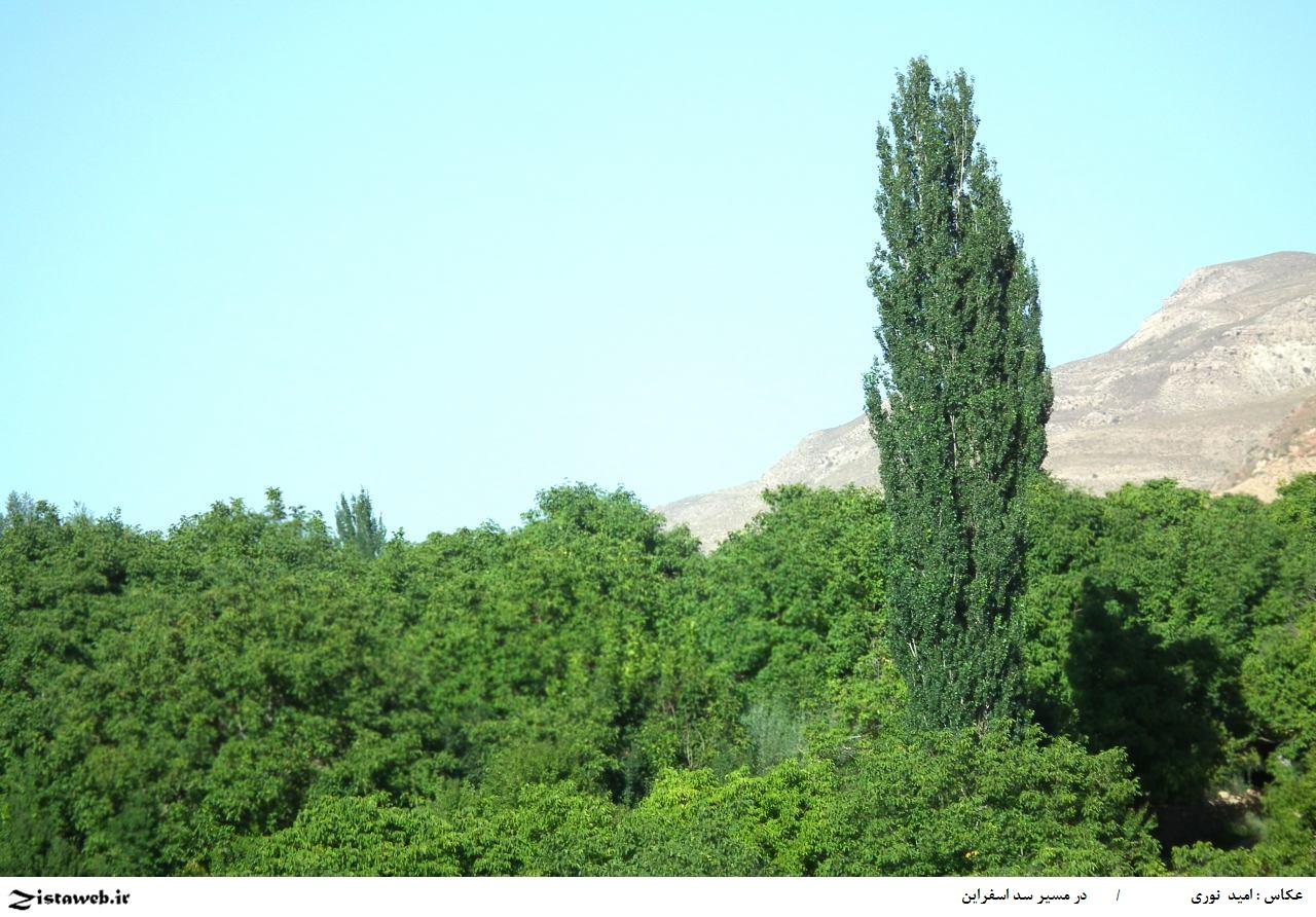 مجموعه عکس های زیبای در مسیر سد اسفراین /عکاس امید نوری