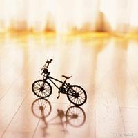 دوچرخه مینیاتوری