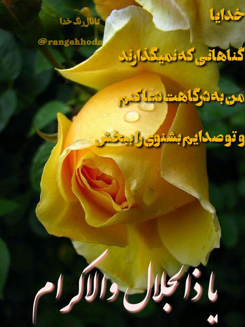 ذکر_روز_یکشنبه