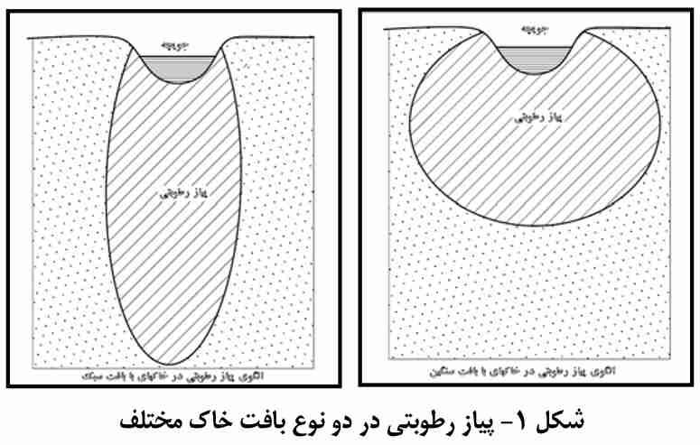 پیاز رطوبتی در دو نوع بافت خاک مختلف