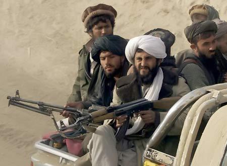 طالبان در افغانستان درخت میکارند و انسان درو میکنند