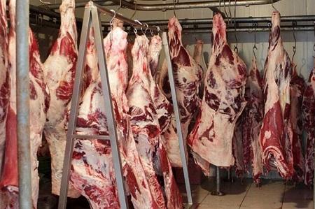 نظارت دامپزشکی آستارا بر گوشت وارداتی از گمرک