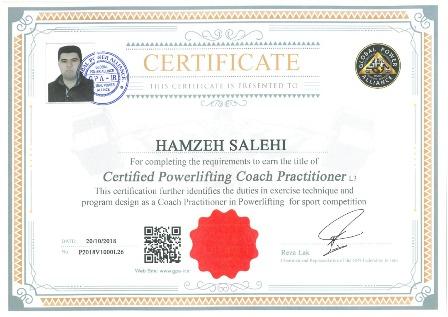 hamzeh salehi power lifting