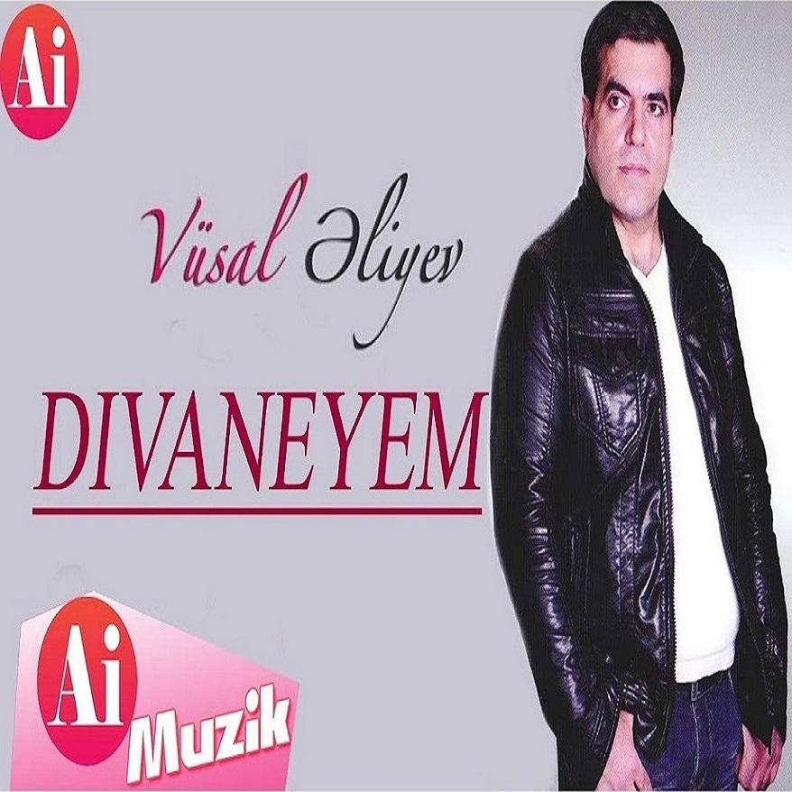 http://s2.picofile.com/file/8373419518/37Vusal_Eliyev_Divaneyem.jpg